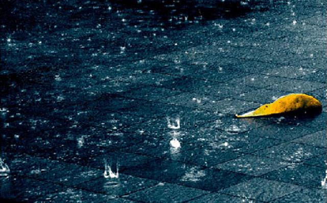 Во Куманово наврна 14 литри дожд