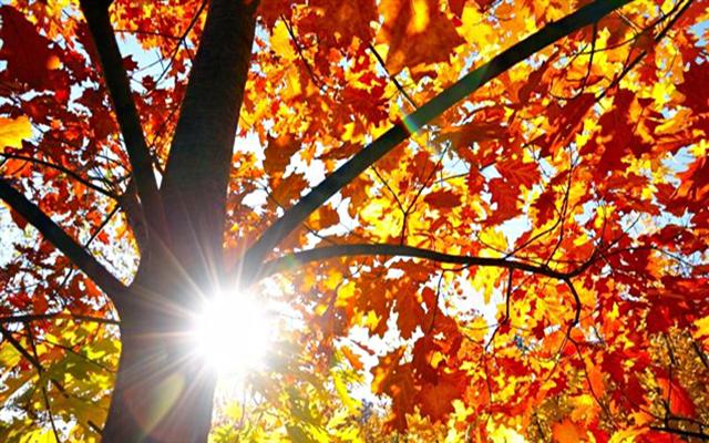 Почнува есента, заврши летото