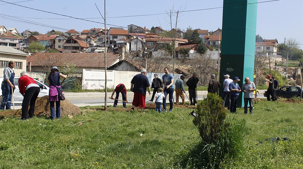 """ЛДП засади јасени во паркот кај """"Туш"""""""