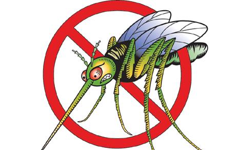 Во Старо Нагоричане утревечер ќе се прска против комарци