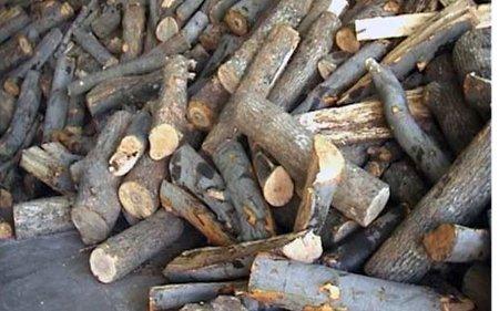 Кумановска фирма не испорачала дрва по договор во Здравствен дом во Виница