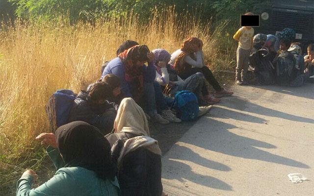Откриени мигранти во Ваксинце и Лојане