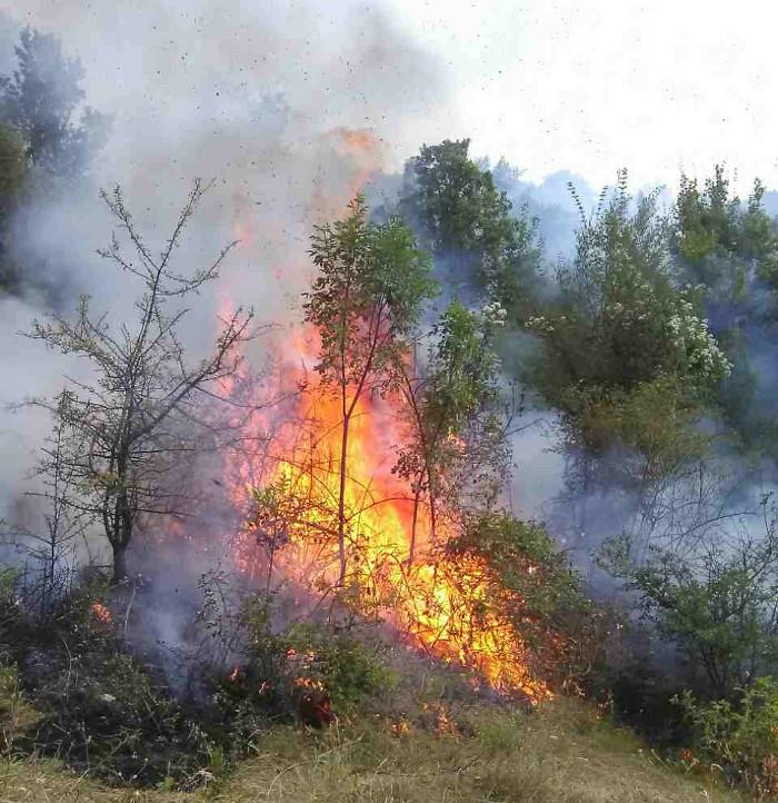 Голем пожар околу опсерваторијата Кокино